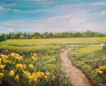 Meadow in Bloom